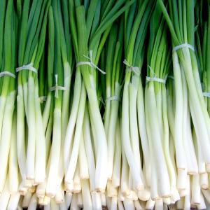 oignon-vert
